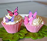 Edible Butterflies © - Small Assorted Pink and Purple Set of 24 - Cake and Cupcake Toppers, Decoration
