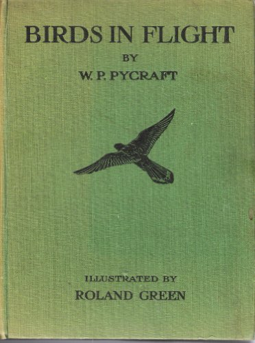 Large book cover: Birds in Flight
