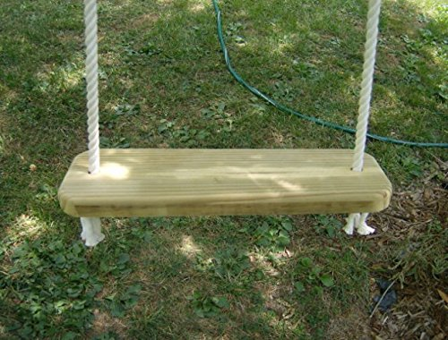 Wood Tree Swing with 10 Feet of Rope per side