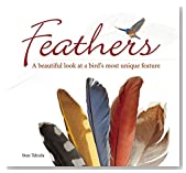 Feathers: A Beautiful Look at a Bird's Most Unique Feature (Bird Appreciation)