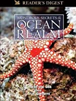 Wondrous Secrets of the Ocean Realm: City in the Sea & Star Gardens