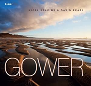 Gower by Nigel Jenkins