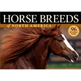 Horse Breeds of North America ~ Judith Dutson