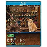 岩合光昭の世界ネコ歩き ソレントとカプリ島(ポストカード付)