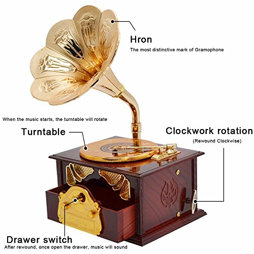 Fding Classical Trumpet Horn Turntable Gramophone Art Disc Music Box & Make up Case &Jewelry Box Home Decor (Brown) 3
