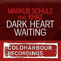 Dark Heart Waiting (Paul Trainer Remix)