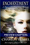 Enchantment Preview Chapters: A Magical YA Paranormal Romance (The Channie Series)