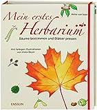 Mein erstes Herbarium - Bäume bestimmen und Blätter pressen