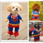 Sanlise New Pet Cat Dog Puppy Cotton...