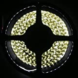 HitLights Cool White Double Density 600 LEDs Flexible Light Strip, 3528 Type SMD, 5 Meter or 16.4 Ft, 12 Volt, 48 Watt