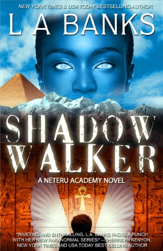 Shadow Walker (Neteru Academy Books)