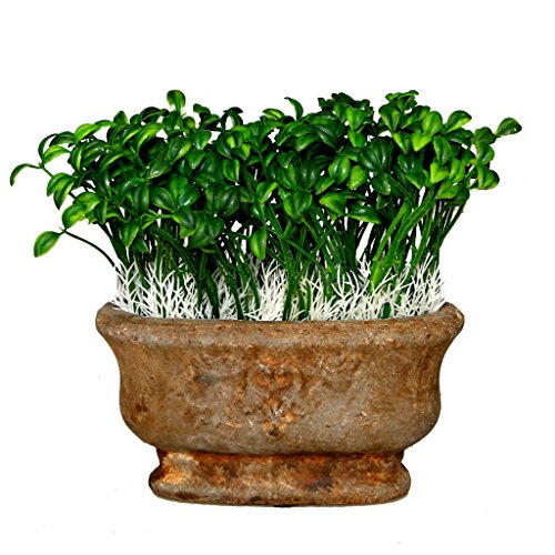 Alilaw Artificial Potted Plant Bean Sprout In Ceramic Pot