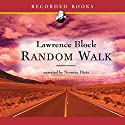 Random Walk Audiobook by Lawrence Block Narrated by Norman Dietz