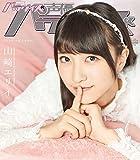 声優パラダイスR vol.15(AKITA DXシリーズ)