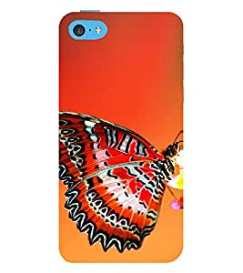 EPICCASE Butterfly in wild Mobile Back Case Cover For Apple iPhone 5c (Designer Case)
