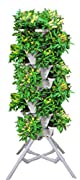 Vertical Gardening Vegetable Tower - Indoor / Outdoor Tiered Backyard Plant Stand and Pots - Tall Standing Pot Plant Holder - Sturdy Stacking Pots Stand for Poinsettia Herbs Strawberries Flowers Peppers and Veggies (Stone)