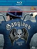 Gangland: Complete Season 6 [Blu-ray]