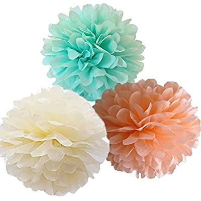 CheckMineOut 12pcs Mixed Ivory Peach Mint Tissue Paper Pom Poms Flowers Wedding Centerpieces Birthday Party Bridal Shower Party Hanging Decoration