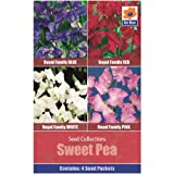 Flower Seed Collections - 4 in 1 pack - Sweet Pea