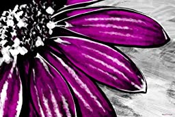 Maxwell Dickson ''Purple Petals'' Floral Flower Pop Art Canvas Print Artwork