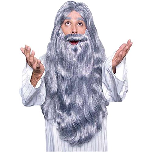 Merlin Wizard Costume Wig & Beard Set