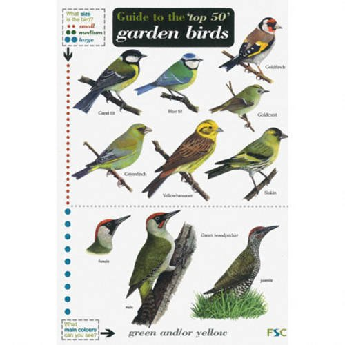 guide-to-the-top-50-garden-birds-field-studies-council-occasional-publications