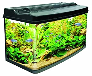 Interpet original fish pod glass aquarium fish tank 120 for Amazon fish tank
