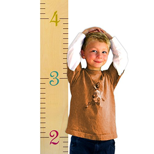 Wooden Ruler Growth Chart by Growth Chart Art | Birch Multi-Color