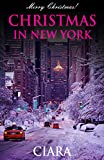 Christmas in New York(BWWM Interracial Christmas Romance)