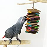 Bella BirdCo Fiesta Toy