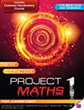 img - for New Concise Project Maths: For Junior Cert for 2015 Exam and Onwards book / textbook / text book