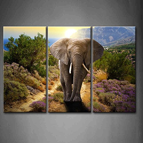3 Panel Wall Art Elephant Walking On The Road At Sunset Mountain Flower Grass Tree Painting Pictures Print On Canvas Animal The Picture For Home Modern Decoration Piece (Stretched By Wooden Frame,Ready To Hang)