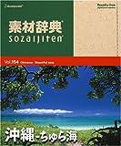 素材辞典 Vol.154 沖縄~ちゅら海編