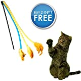 "Cat Toys Interactive Cat Wand Cat Feather Toy Cat Teaser Cat Dancer Best Cat Charmer On The Market Soft Durable Virtually Indestructible Interactive Cat Toy Drives Cats Nuts Great Exercise For Cats **Limited Time Introductory Offer 30% Off + BUY ANY 2 PET FIT FOR LIFE CAT WANDS (There are 7 in all), GET A THE 3RD ONE FREE** + Free Bonus PDF ""A Cats Tale"" Keep Your Cat Healthy And Fit Pet Fit For Life Cat Toys Guaranteed To Be 100% Fun"