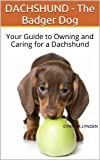 DACHSHUND - The Badger Dog: Your Guide to Owning and Caring for a Dachshund