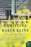 Sweet Water: Novel, A