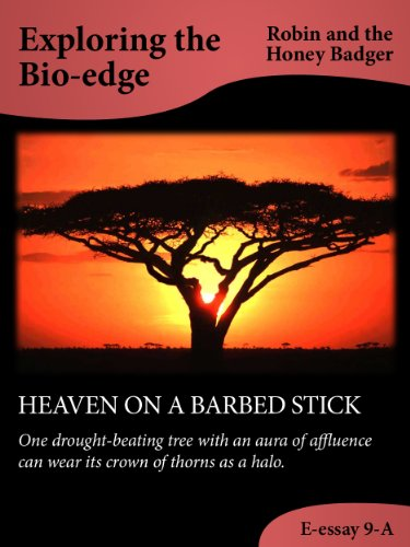 Robin and the Honey Badger - HEAVEN ON A BARBED STICK (Exploring the Bio-edge Book 9) (English Edition)