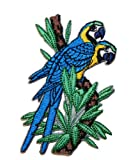 Macaw Parrot Bird Embroidered Iron on patch