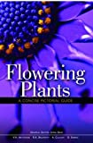 img - for Flowering Plants: A Concise Pictorial Guide book / textbook / text book