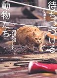 待ちつづける動物たち 福島第一原発20キロ圏内のそれから