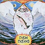 Fish Risingpar Steve Hillage