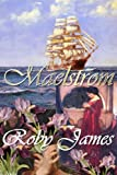 img - for Maelstrom book / textbook / text book