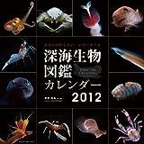 深海生物図鑑 カレンダー 2012年