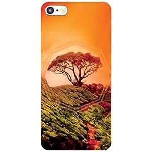 Apple iPhone 5C Back Cover - Gardenic Designer Cases