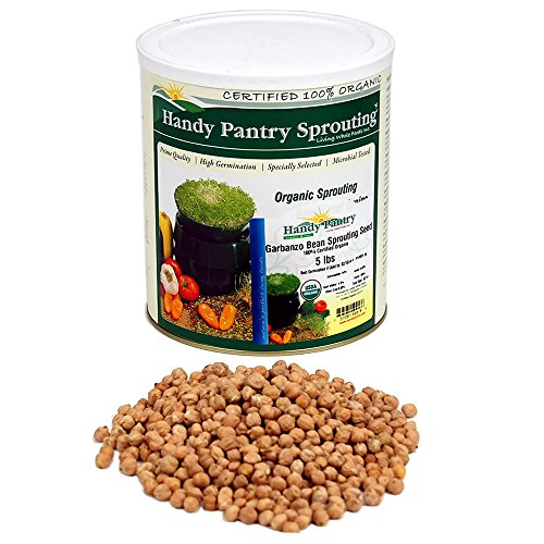 Organic Garbanzo Bean Sprouting Seeds - Sprout Seed For Sprouts -5 Lb