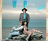Wilson Phillips Hold On (1990)