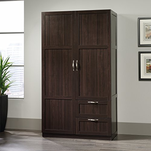 Sauder Large Storage Cabinet, Cinnamon Cherry Finish (Sauder Wardrobe Cabinet compare prices)