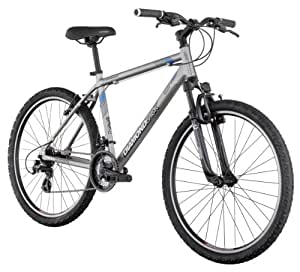Diamondback Sorrento Mountain Bike (26-Inch Wheels), Silver, Small/16-Inch