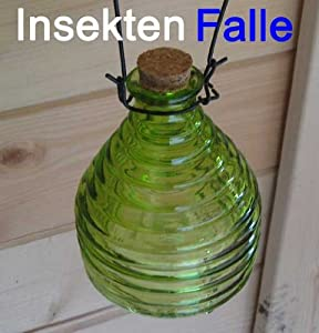 insektenfalle glas umweltfreundlich und ohne gift. Black Bedroom Furniture Sets. Home Design Ideas