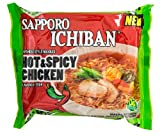 Sanyo Sapporo Ichiban Instant Noodle, Hot and Spicy, 3.5-Ounce (Pack of 24)